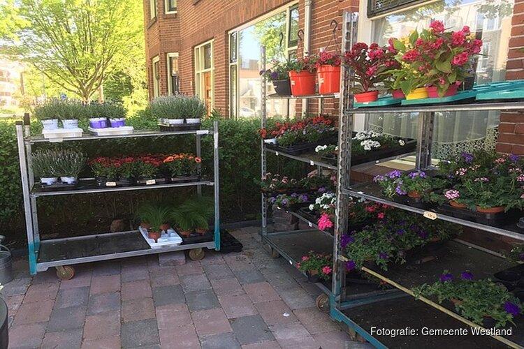 Stop verkoop bloemen en planten door particulieren